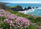 Hartland coast