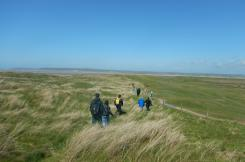 Naturally Healthy walkers on Northam Burrows